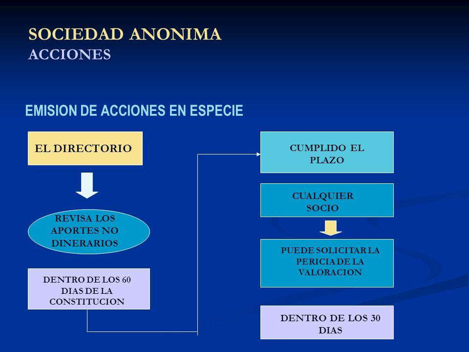 SOCIEDAD ANONIMA ACCIONES