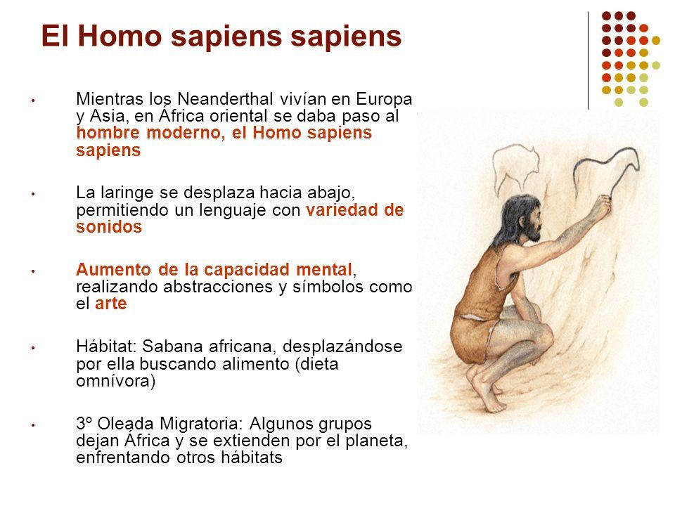 El Homo sapiens sapiens