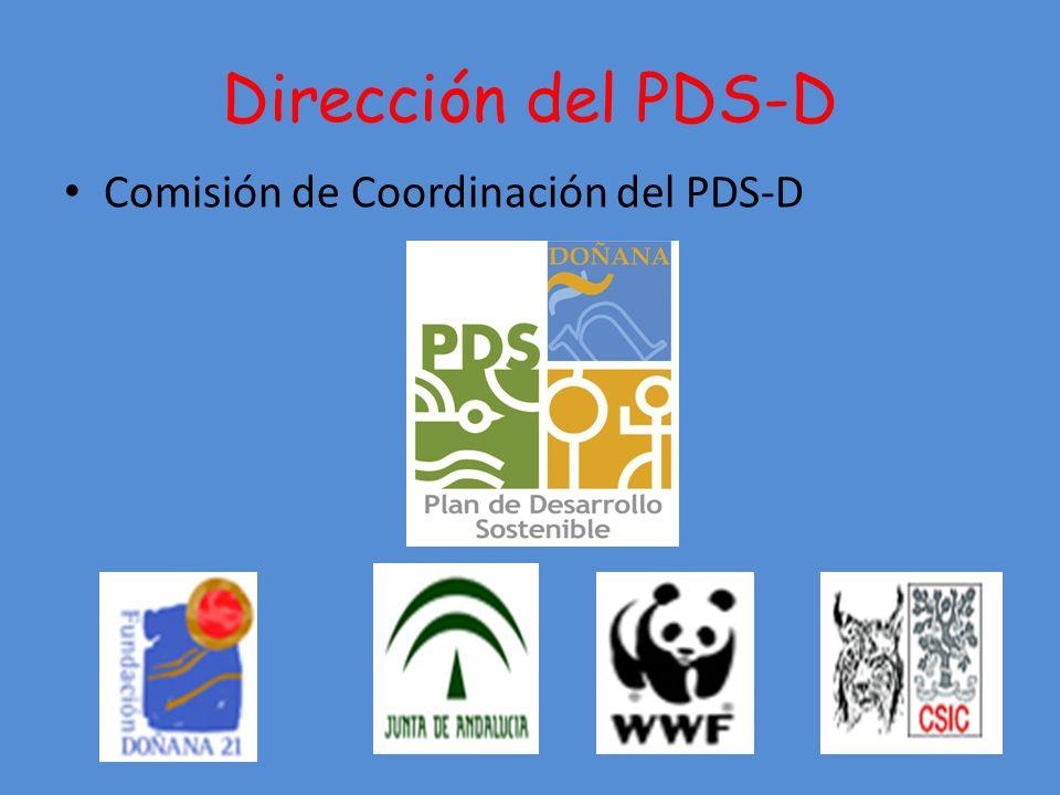 Dirección del PDS-D Comisión de Coordinación del PDS-D