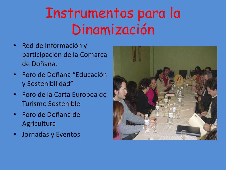 Instrumentos para la Dinamización