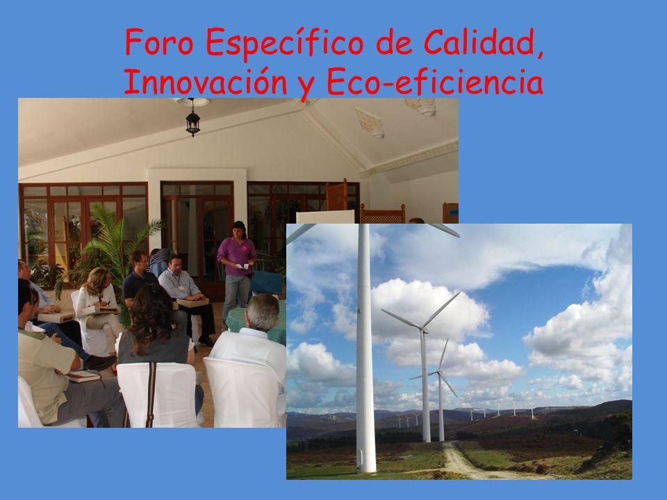 Foro Específico de Calidad, Innovación y Eco-eficiencia