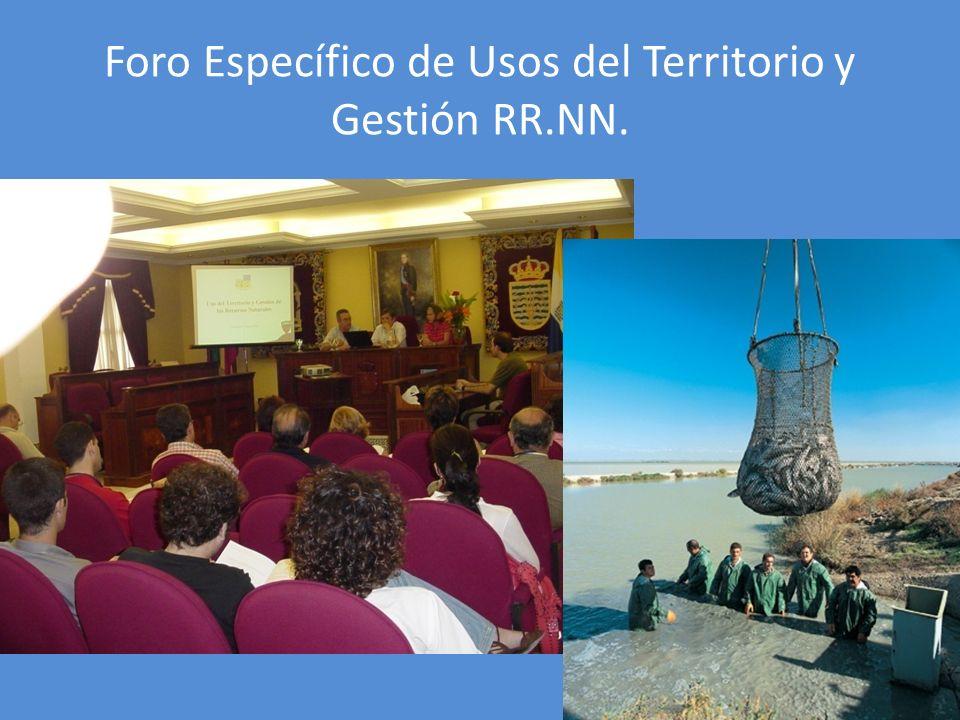 Foro Específico de Usos del Territorio y Gestión RR.NN.