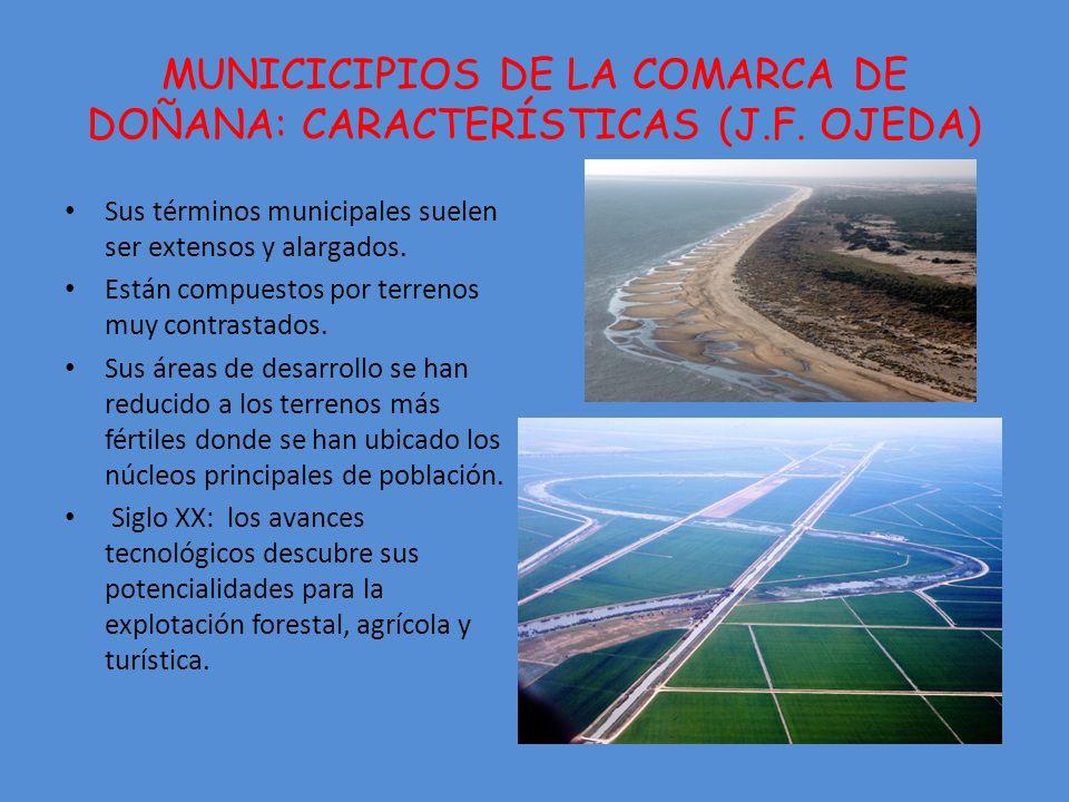 MUNICICIPIOS DE LA COMARCA DE DOÑANA: CARACTERÍSTICAS (J.F. OJEDA)