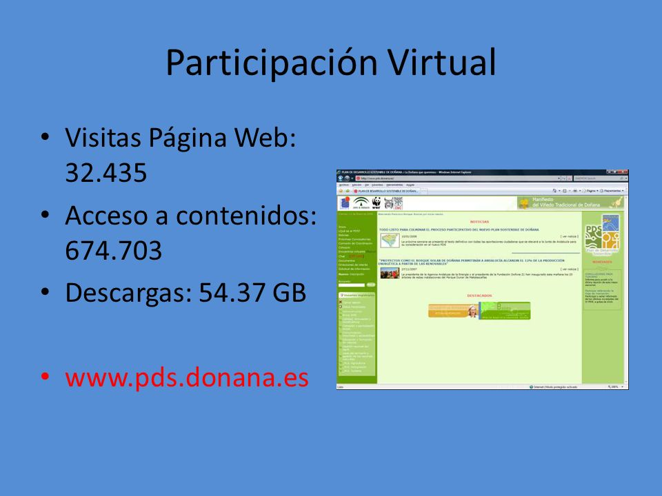 Participación Virtual