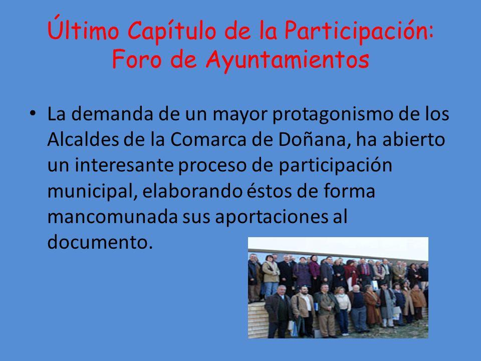 Último Capítulo de la Participación: Foro de Ayuntamientos
