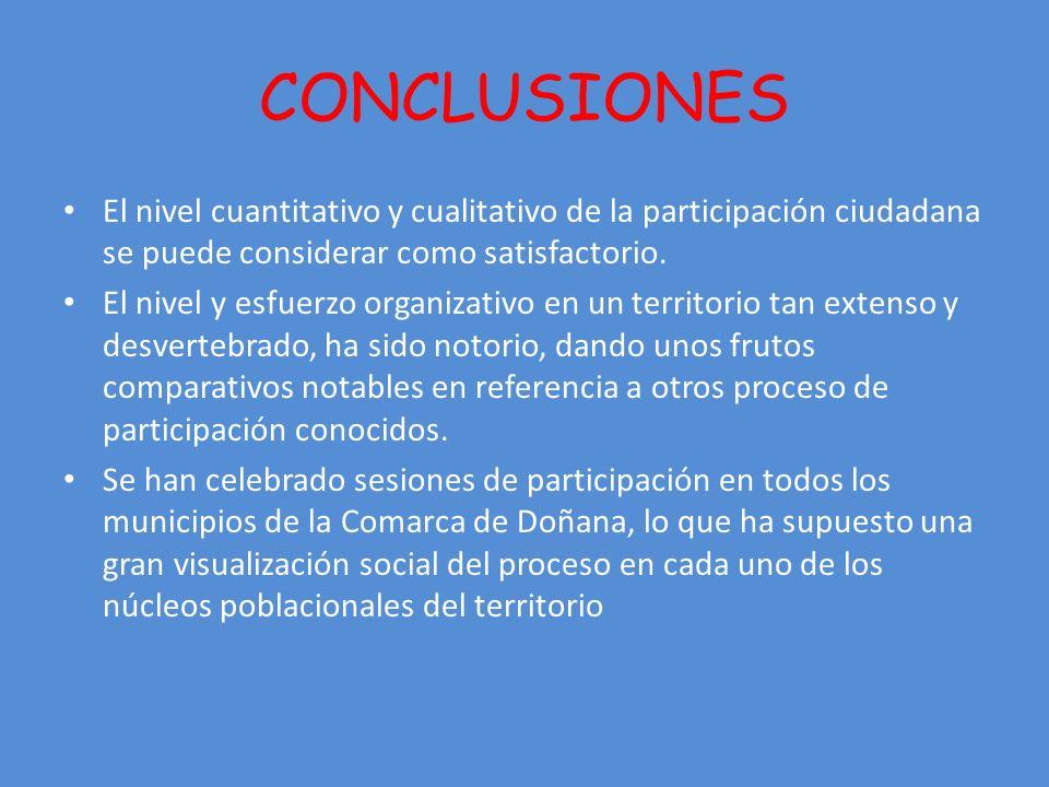 CONCLUSIONES El nivel cuantitativo y cualitativo de la participación ciudadana se puede considerar como satisfactorio.