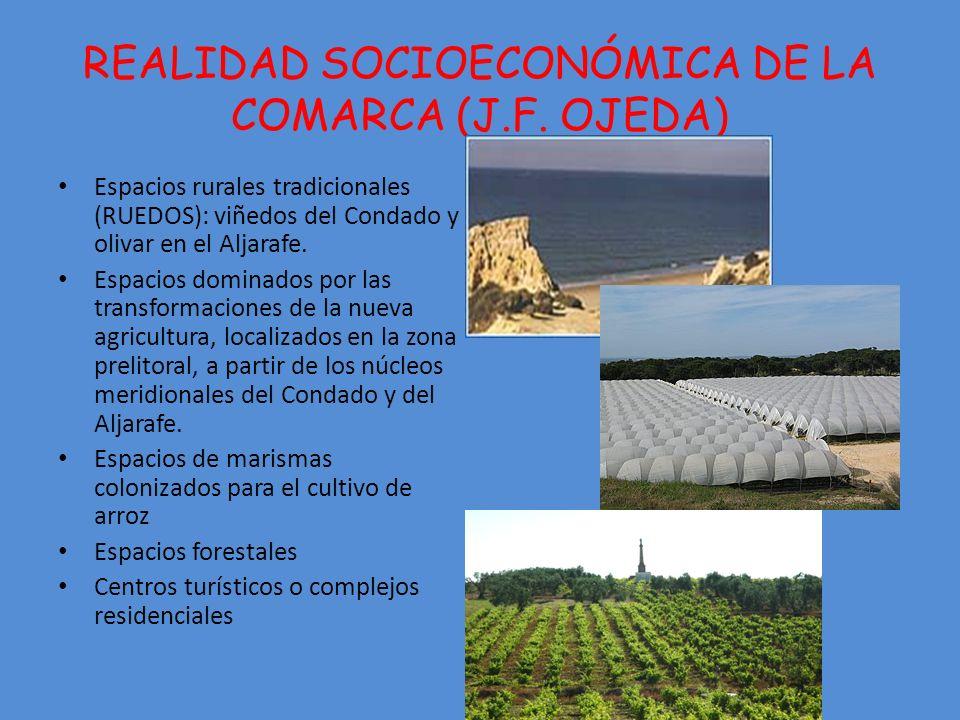 REALIDAD SOCIOECONÓMICA DE LA COMARCA (J.F. OJEDA)