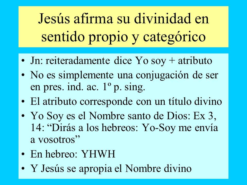 Jesús afirma su divinidad en sentido propio y categórico