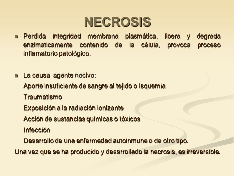 NECROSIS Perdida integridad membrana plasmática, libera y degrada enzimaticamente contenido de la célula, provoca proceso inflamatorio patológico.