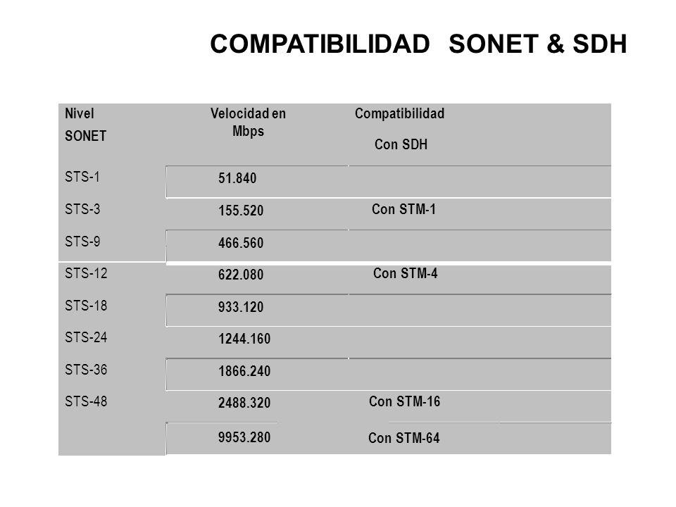 COMPATIBILIDAD SONET & SDH