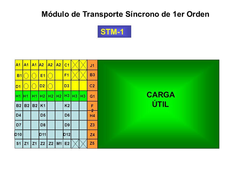 Módulo de Transporte Síncrono de 1er Orden