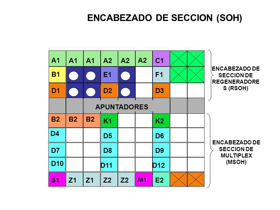 ENCABEZADO DE SECCION (SOH)