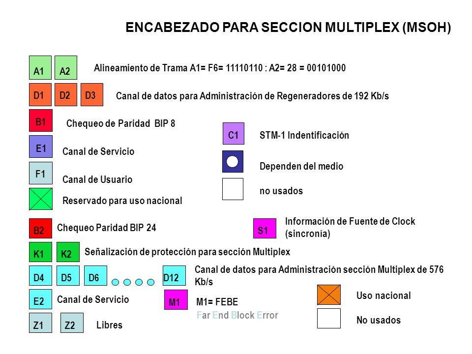 ENCABEZADO PARA SECCION MULTIPLEX (MSOH)