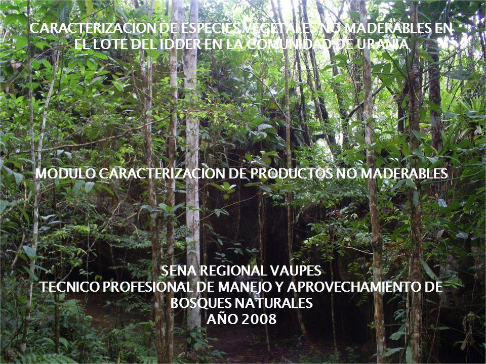 MODULO CARACTERIZACION DE PRODUCTOS NO MADERABLES