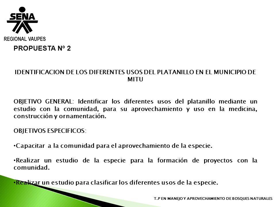 REGIONAL VAUPESPROPUESTA Nº 2. IDENTIFICACION DE LOS DIFERENTES USOS DEL PLATANILLO EN EL MUNICIPIO DE MITU.