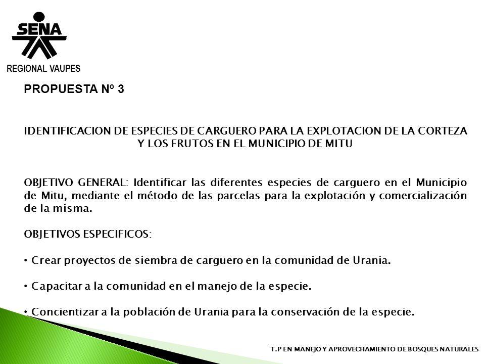 REGIONAL VAUPESPROPUESTA Nº 3. IDENTIFICACION DE ESPECIES DE CARGUERO PARA LA EXPLOTACION DE LA CORTEZA Y LOS FRUTOS EN EL MUNICIPIO DE MITU.
