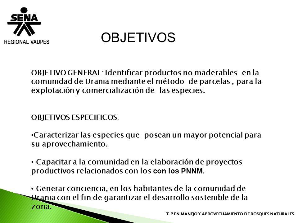 OBJETIVOS REGIONAL VAUPES.