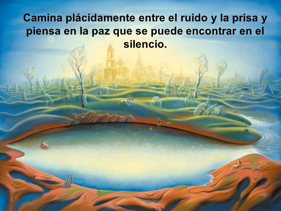 Camina plácidamente entre el ruido y la prisa y piensa en la paz que se puede encontrar en el silencio.