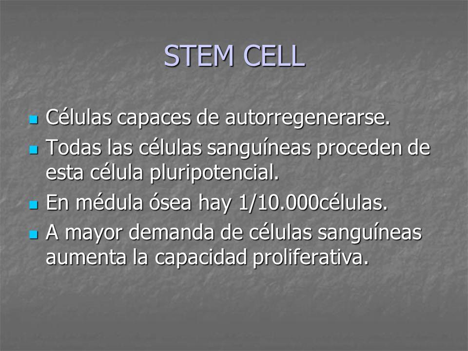 STEM CELL Células capaces de autorregenerarse.