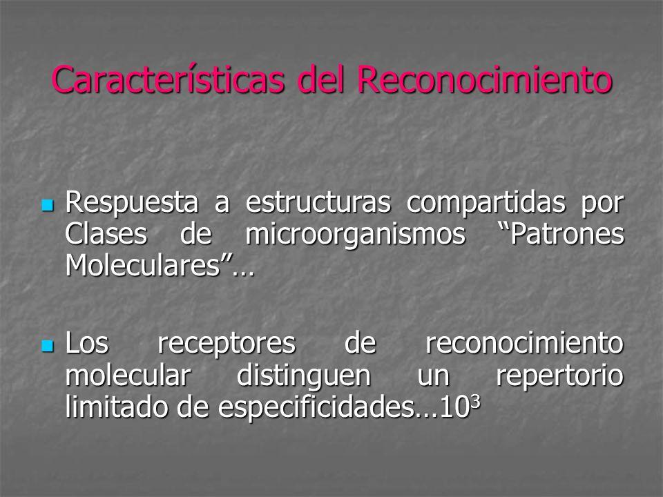 Características del Reconocimiento