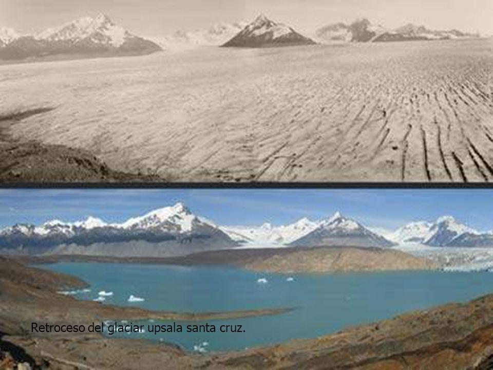 Retroceso del glaciar upsala santa cruz.