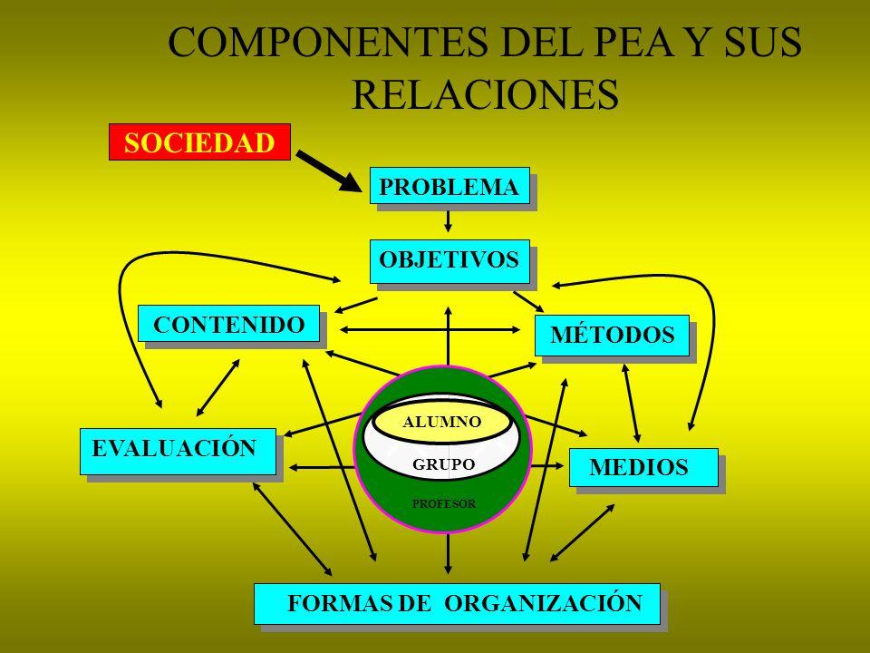 COMPONENTES DEL PEA Y SUS RELACIONES