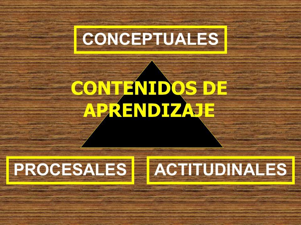CONTENIDOS DE APRENDIZAJE