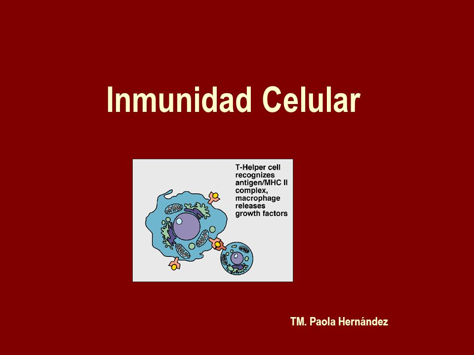Inmunidad Celular TM. Paola Hernández
