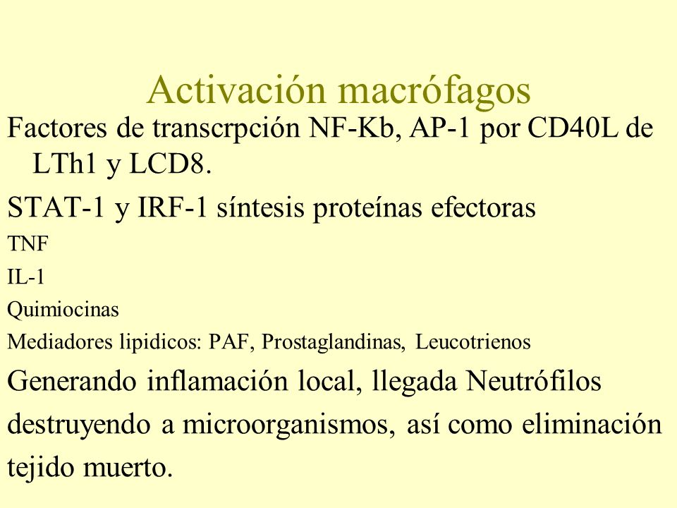 Activación macrófagos