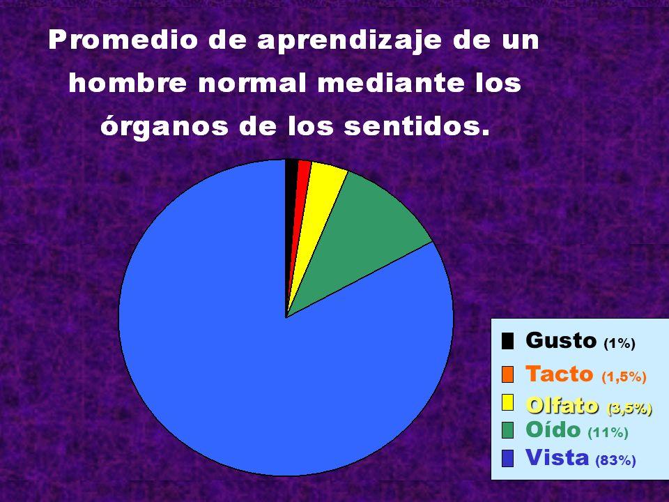 Gusto (1%) Tacto (1,5%) Olfato (3,5%) Oído (11%) Vista (83%)