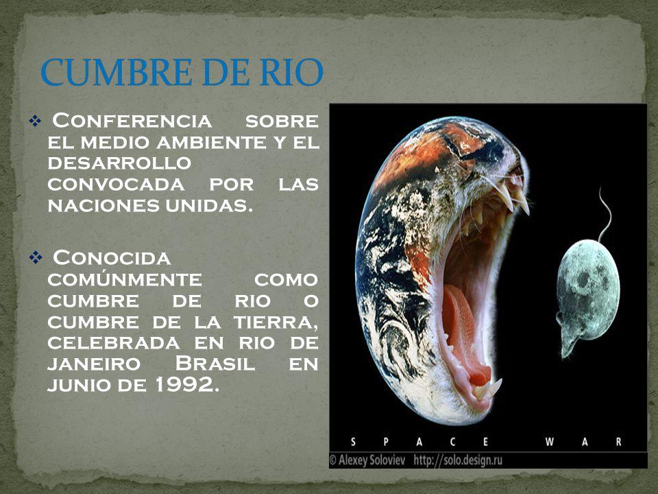 CUMBRE DE RIOConferencia sobre el medio ambiente y el desarrollo convocada por las naciones unidas.