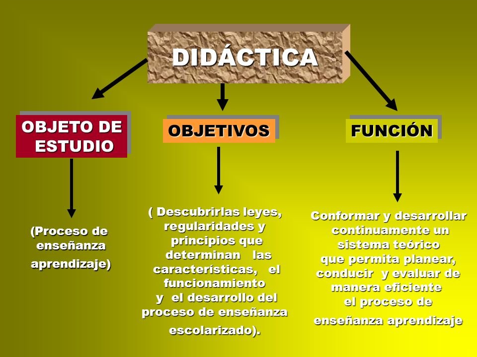 DIDÁCTICA OBJETO DE ESTUDIO OBJETIVOS FUNCIÓN ( Descubrirlas leyes,