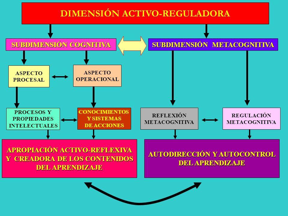 DIMENSIÓN ACTIVO-REGULADORA