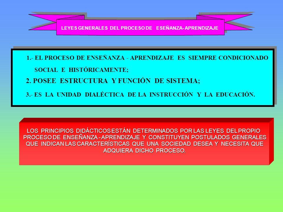 LEYES GENERALES DEL PROCESO DE ESEÑANZA- APRENDIZAJE