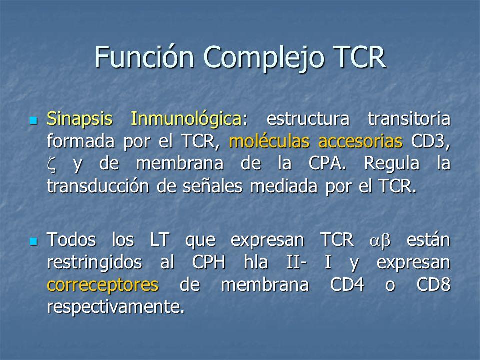 Función Complejo TCR