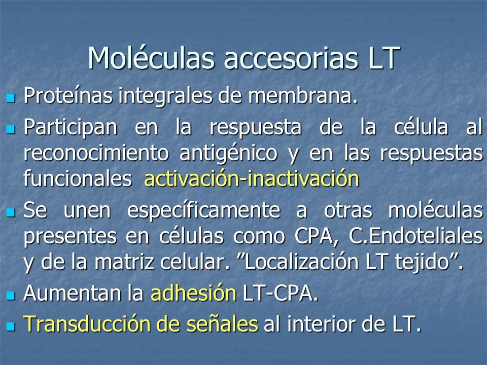 Moléculas accesorias LT