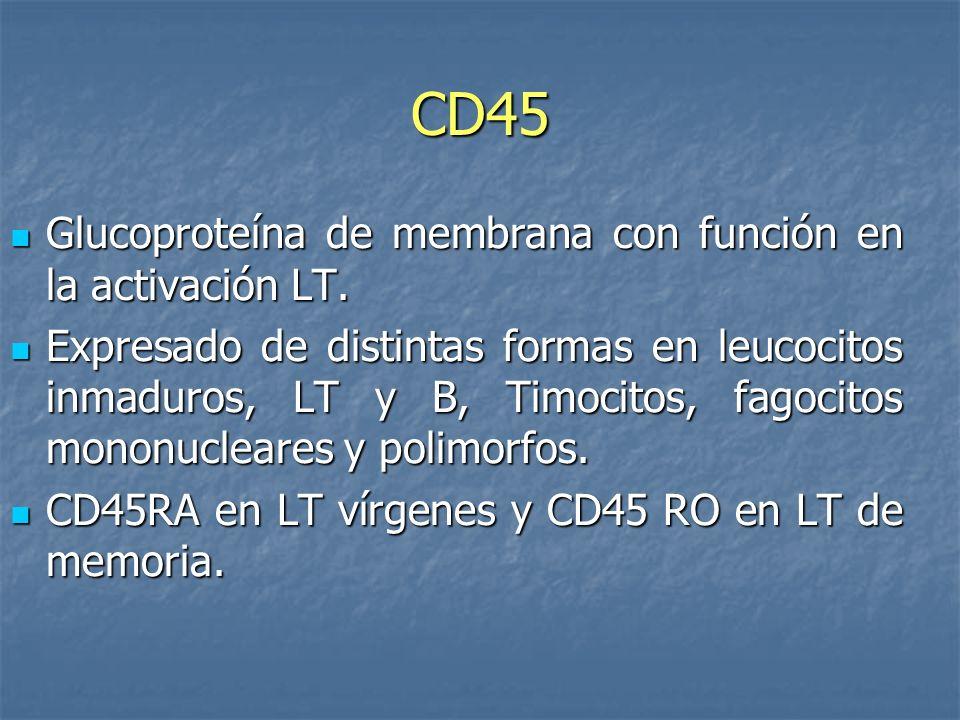 CD45 Glucoproteína de membrana con función en la activación LT.