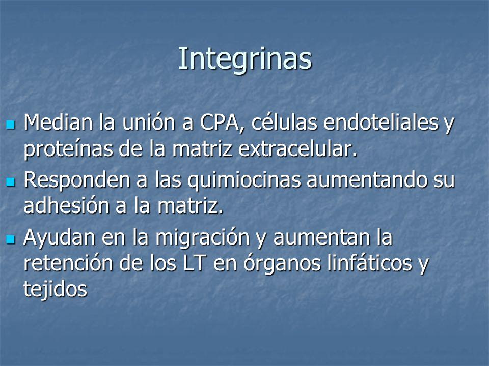 Integrinas Median la unión a CPA, células endoteliales y proteínas de la matriz extracelular.