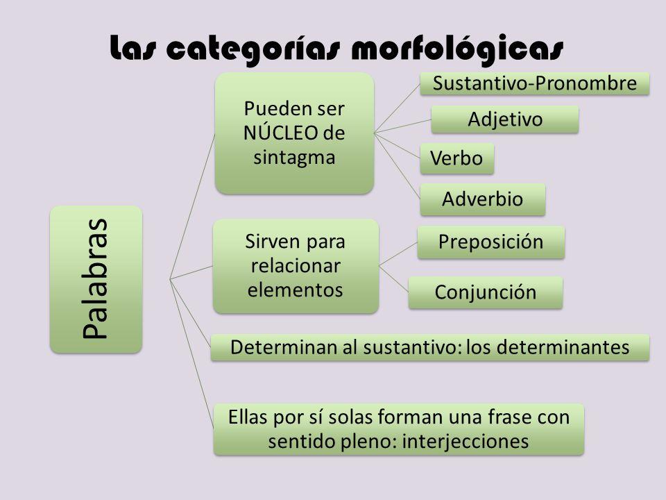 Las categorías morfológicas