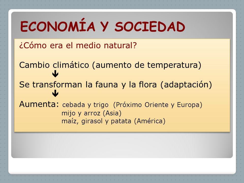 ECONOMÍA Y SOCIEDAD ¿Cómo era el medio natural