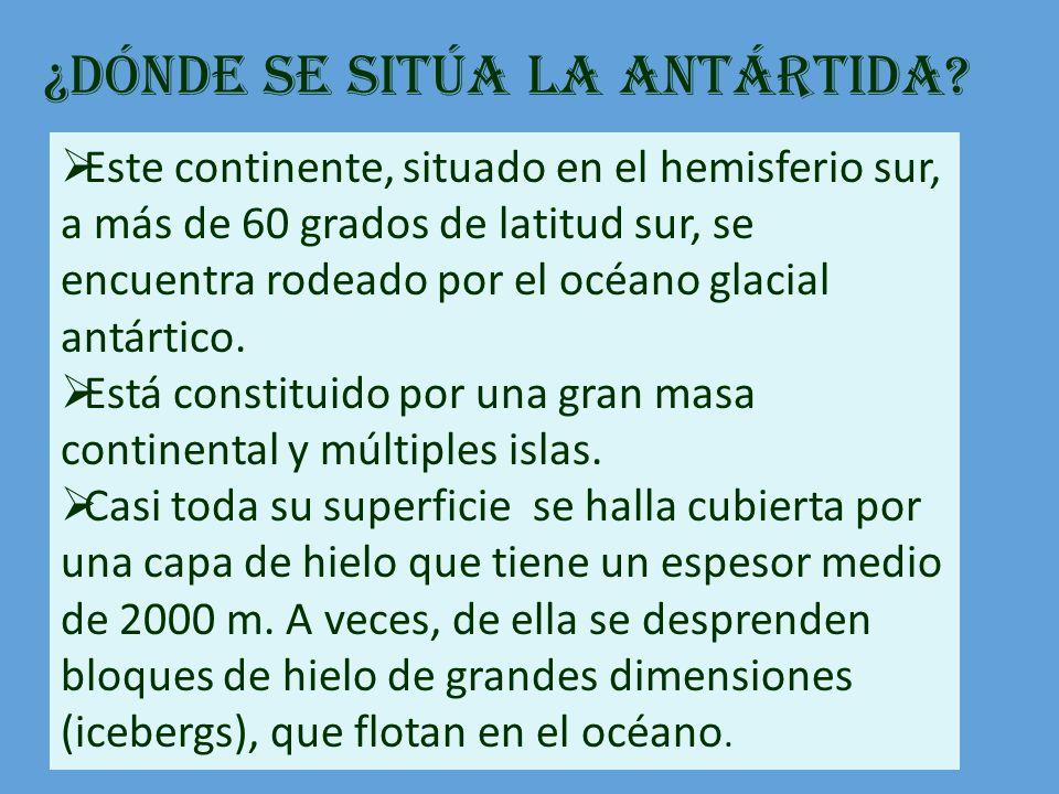 ¿Dónde se sitúa la Antártida