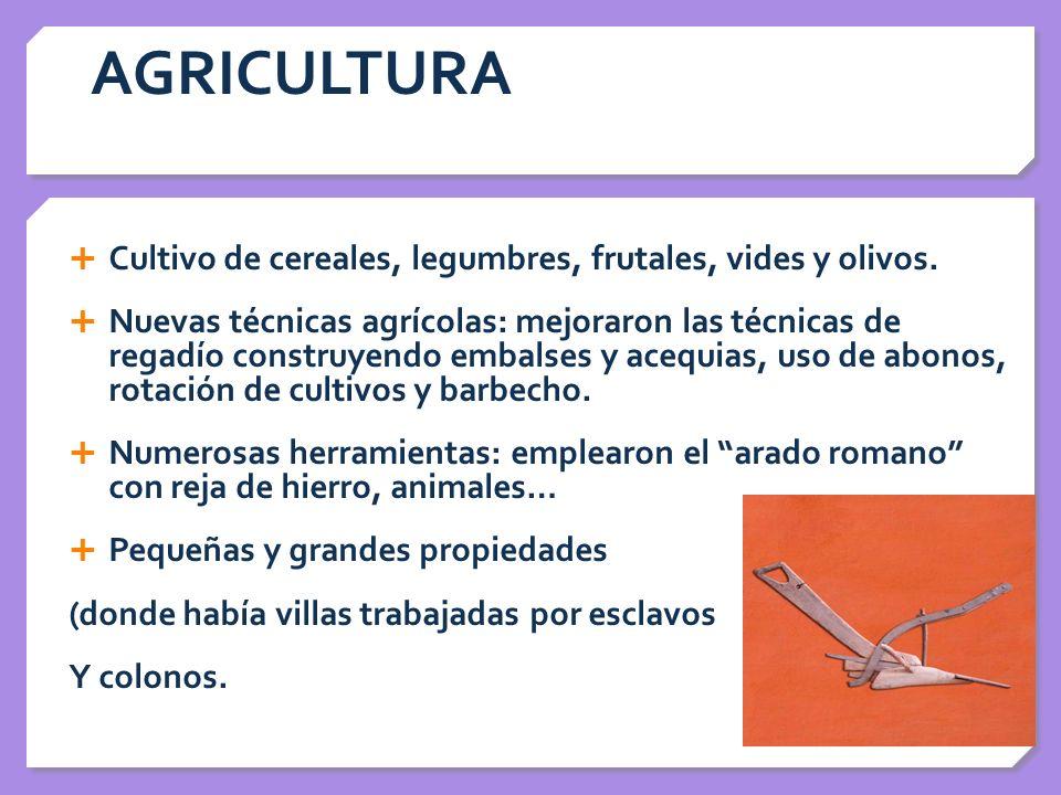 AGRICULTURA Cultivo de cereales, legumbres, frutales, vides y olivos.