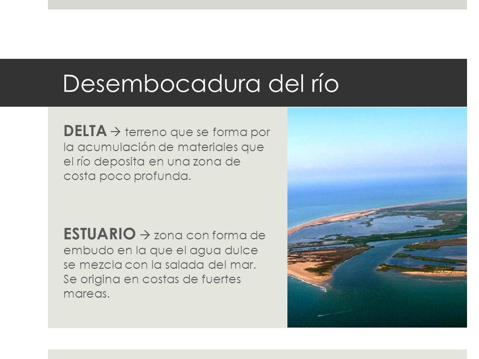 Desembocadura del río DELTA  terreno que se forma por la acumulación de materiales que el río deposita en una zona de costa poco profunda.
