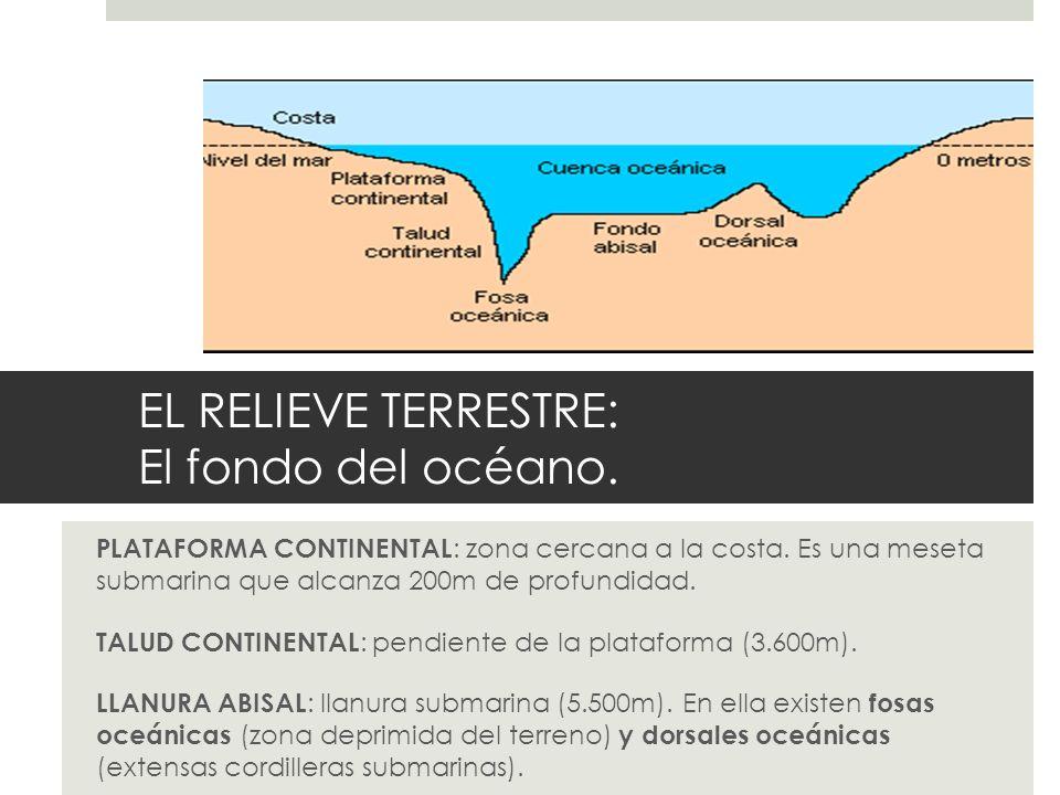 EL RELIEVE TERRESTRE: El fondo del océano.