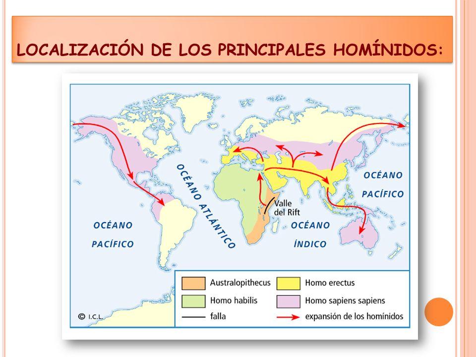 LOCALIZACIÓN DE LOS PRINCIPALES HOMÍNIDOS:
