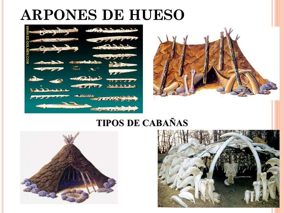ARPONES DE HUESO TIPOS DE CABAÑAS