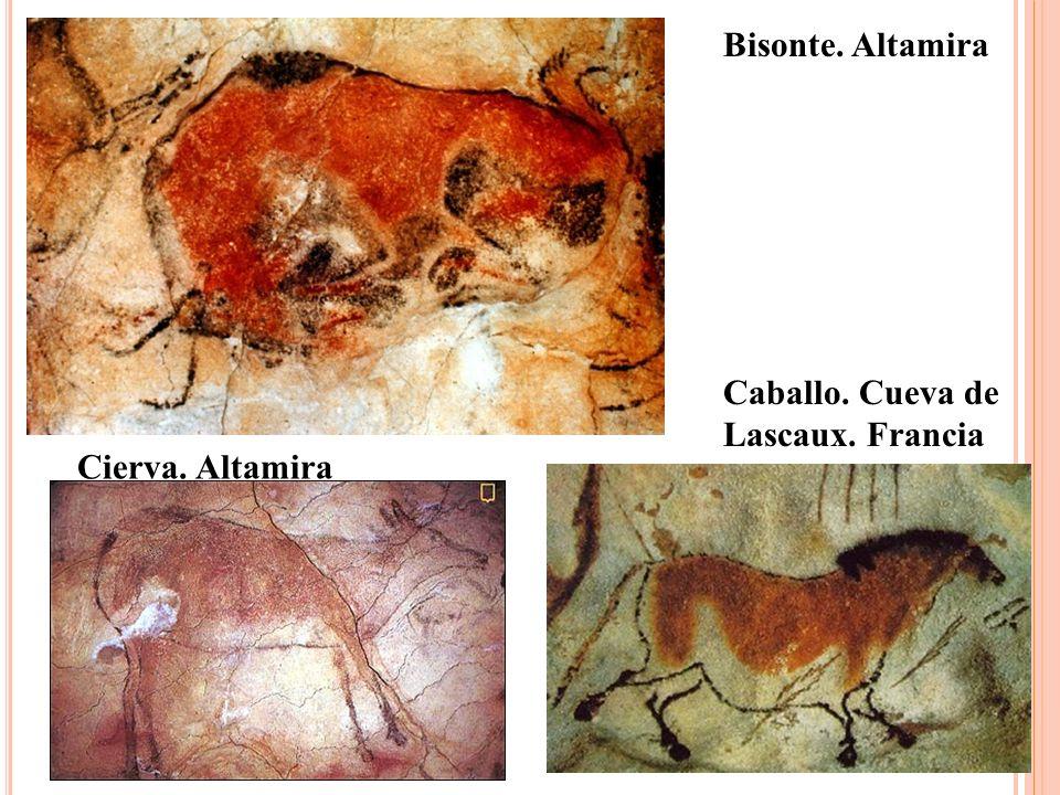 Bisonte. Altamira Caballo. Cueva de Lascaux. Francia Cierva. Altamira