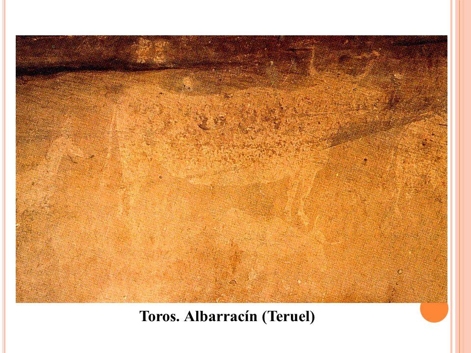 Toros. Albarracín (Teruel)