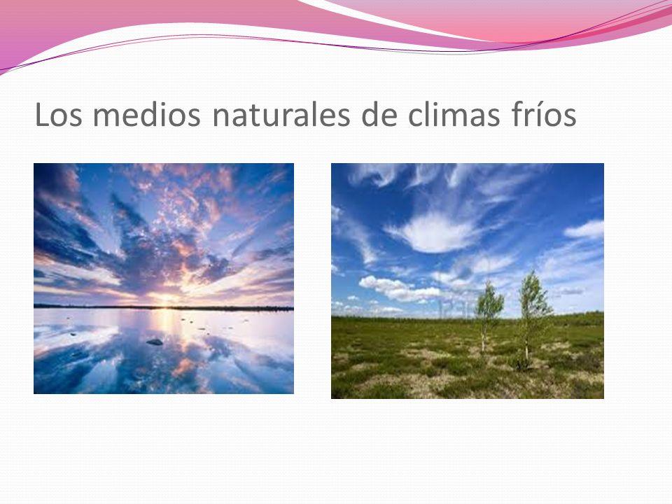 Los medios naturales de climas fríos
