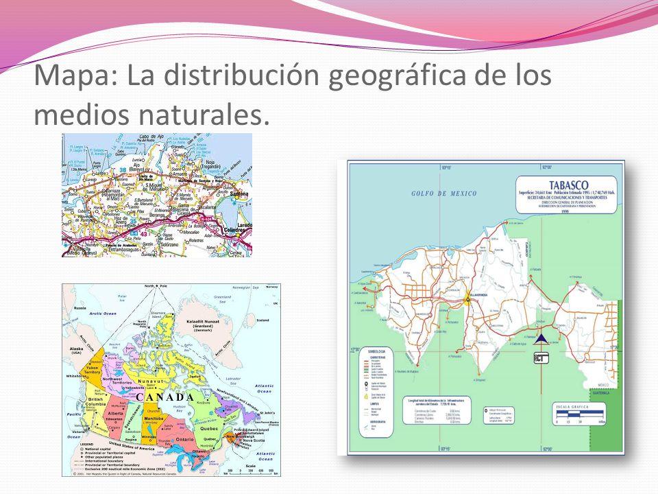 Mapa: La distribución geográfica de los medios naturales.